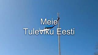 Meie tuleviku Eesti