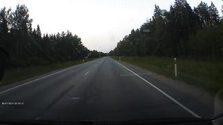лось шоссе таллинн-нарва