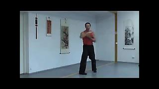 Meihua Wing Tsun - Sifu Дмитрий Сташевич