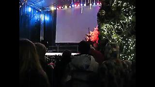Открытие рождественской ярмарки (5) - Таллинн - 2013