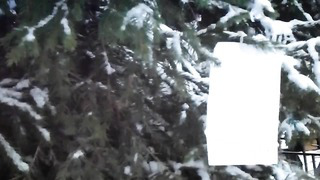 Tallinn. Рождественская атмосфера