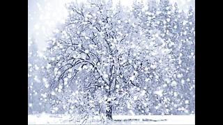 Arctic Madness 2 - Häid Jõule Kõigile!