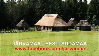 Eesti Vabariigi 92. aastapäeva tähistamine Paides