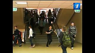 В Линнамяэский русский лицей нагрянула проверка от Министерства образования