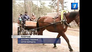 EE0403 vastlad MPEG2 ARCHIVE PAL