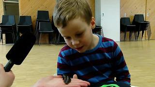 Lapsed tutvuvad Loodusmajas putukatega