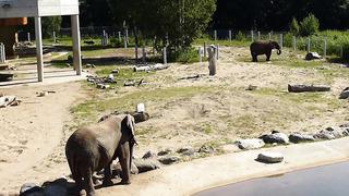 Zoological Garden Tallinn