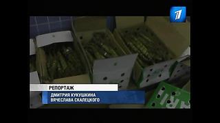 Эстонские таможенники обнаружили в порту рекордное количество ката