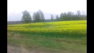 Vlog #3 Эстония,AHHA