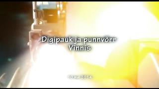 Digipauk ja punnvõrr, digitaalne jalgpallivärav, mai 2014, Vinni, Eesti