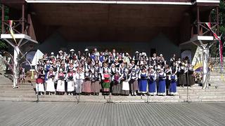 Eesti ingerisoomlaste laulu- ja tantsupidu 2014 Paides. Peo lõpp