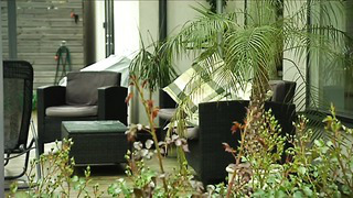 Tartu kaunimad kodud (Suvereporter 29.06.2014 saatelõik)