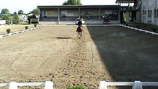 Ave ja Flipper, Baltic Dressage League ESTONIA 2014, L skeem