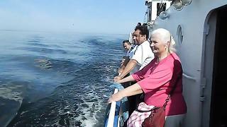 продолжение..день ВМФ Таллинн 2014