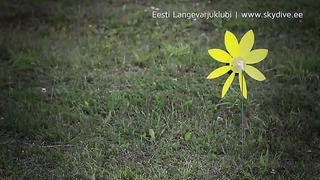 Eesti Langevarjuklubi @ Raplamaa